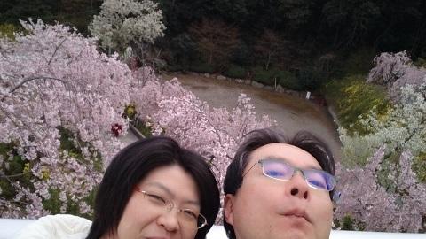 花見山とゆかいな二人